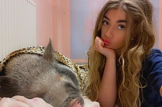 'I spent ₤ 2,000 on a pink bed room for my diva micro pig and we dress in matching Burberry'